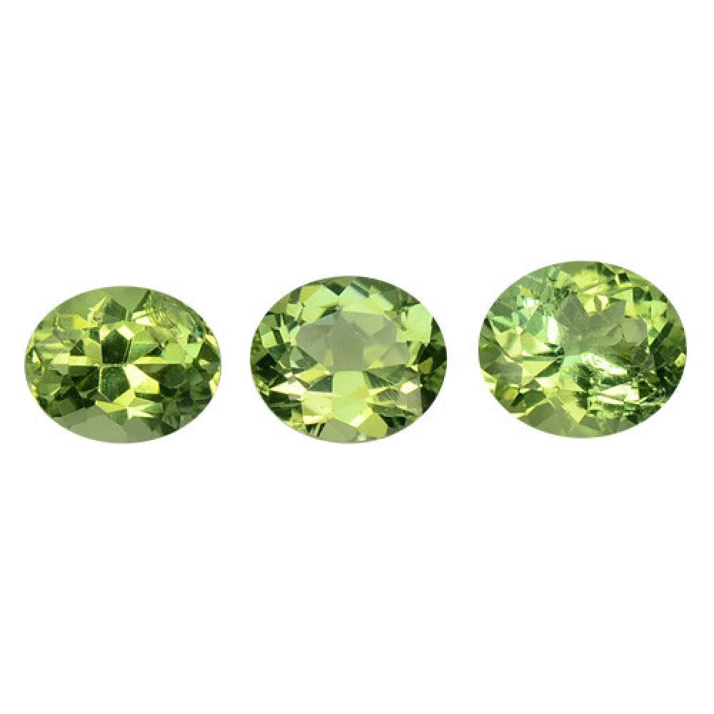 3.00 Carat 3 Pcs Rare Gree Collection Tourmaline Loose Gemstone