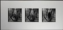 MARY BETH EDELSON (AMERICAN, 1933-) CROSSING OVER - PORT CLYDE, MAINE Photographic triptych: 10 1/2 x 10 1/2 in. (sight) 22 1/4 X 46...