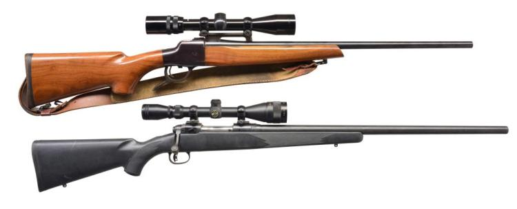 2 AMERICAN RIFLES BY SAVAGE & RIEDL.