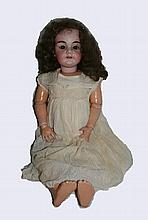 A-M Doll