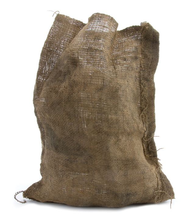 """""""Gale Hawthorne"""" hunting bag from The Hunger Games: Catching Fire ."""