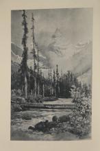 Lot 253: Muir. Picturesque California. 10 parts bound.1888.