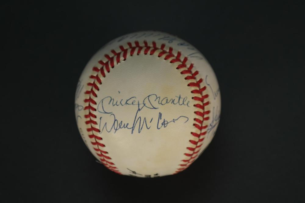 Lot 140: 500 HR Club Signed Baseball