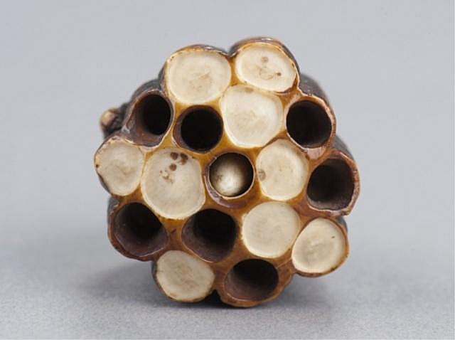 An ivory netsuke of a wasp on its nest.