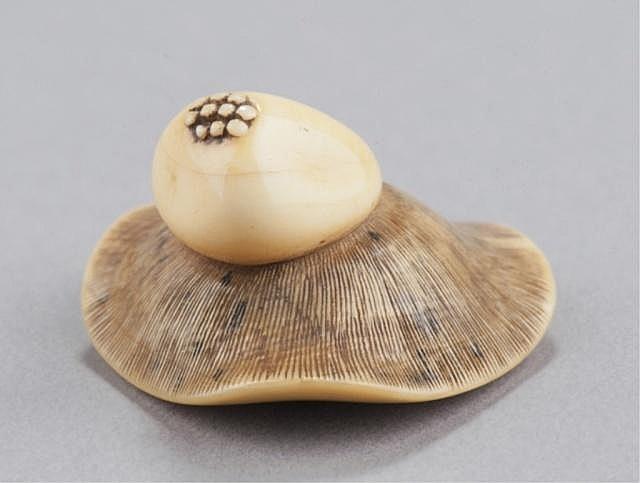 An ivory netsuke of a mushroom.