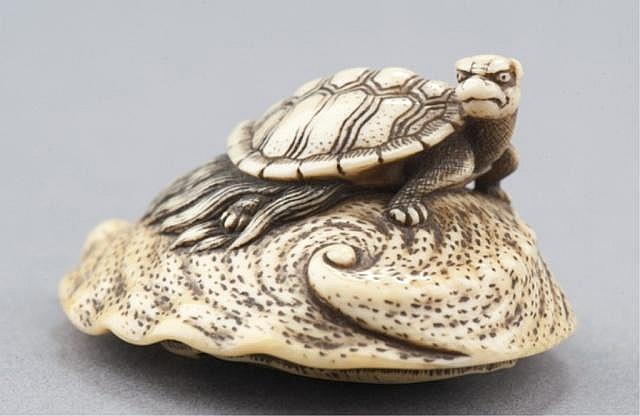 An ivory netsuke of a Minogame tortoise.