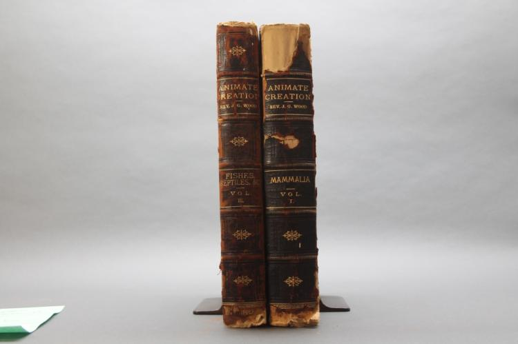 Wood, Holder. ANIMATE CREATION. 2 Vols. 1885)