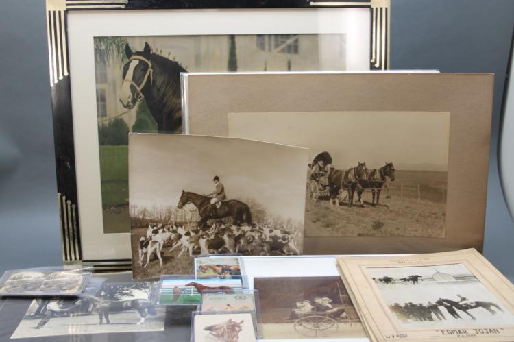 27 Items: Horses. Photographs, stereoviews...