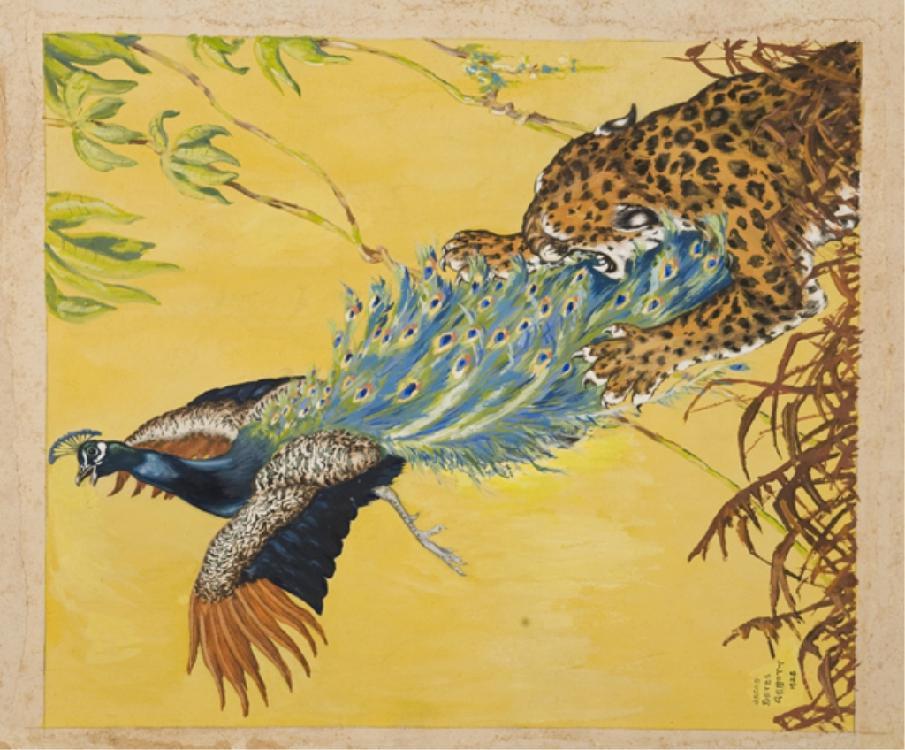 Jacob Bates Abbott cheetah and peacock, gouache.