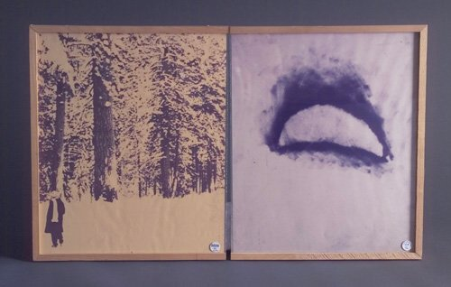 Donald Newman, Leslie in the Woods (Moon), 1975, offset lithograph (diptych), 17 5/8