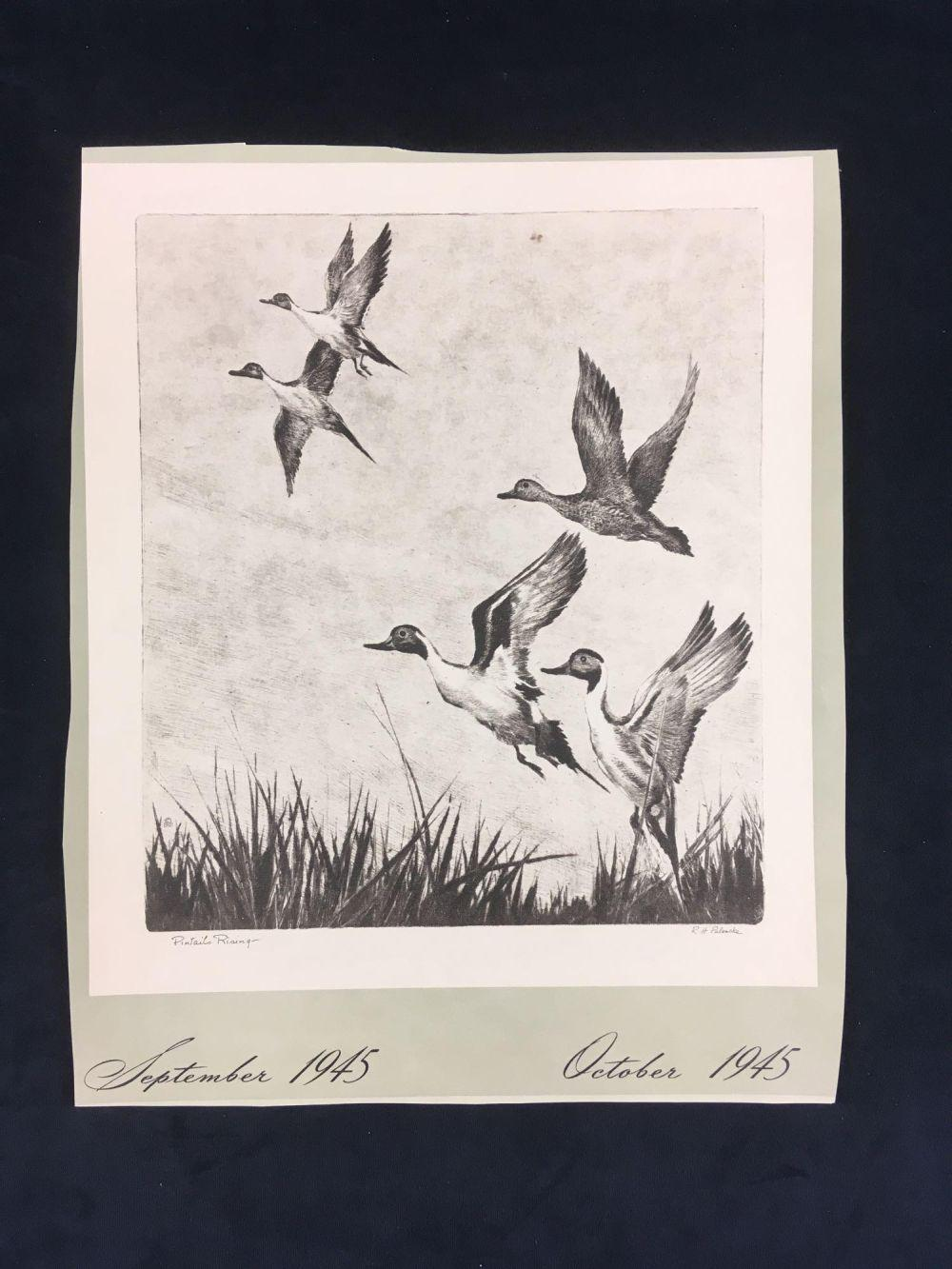 Lot 181: Reinhold Palenske Original Drypoint Wildlife Prints