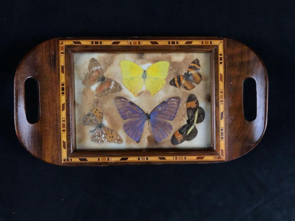 Lot 195: Vintage Deco Butterfly Iridescent Trivet Serving Tray from Brazil