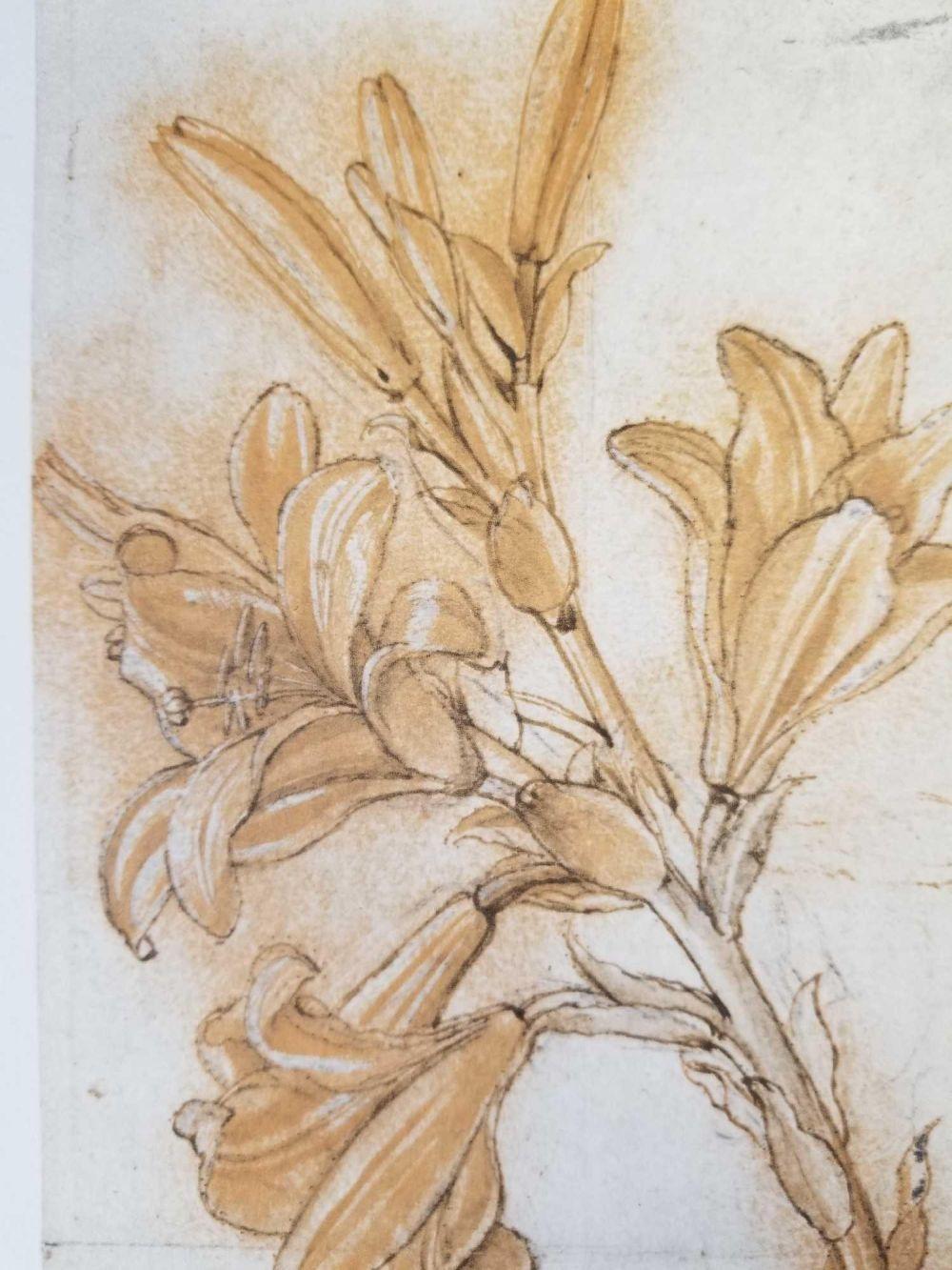 Lot 29: Lot of 3 Leonardo Da Vinci Prints from Royal Library Windsor Castle