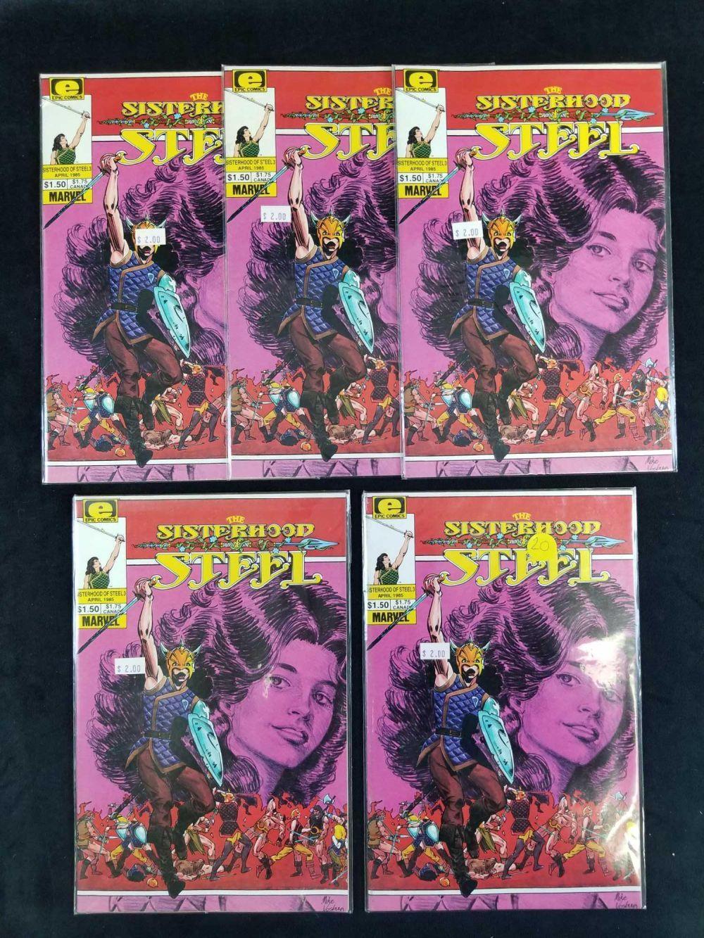 Lot 64: Lot of 14 The Sisterhood Steel Comics