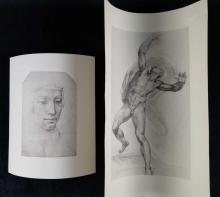 Lot 81: Women Portrait and Male Anatomy Print