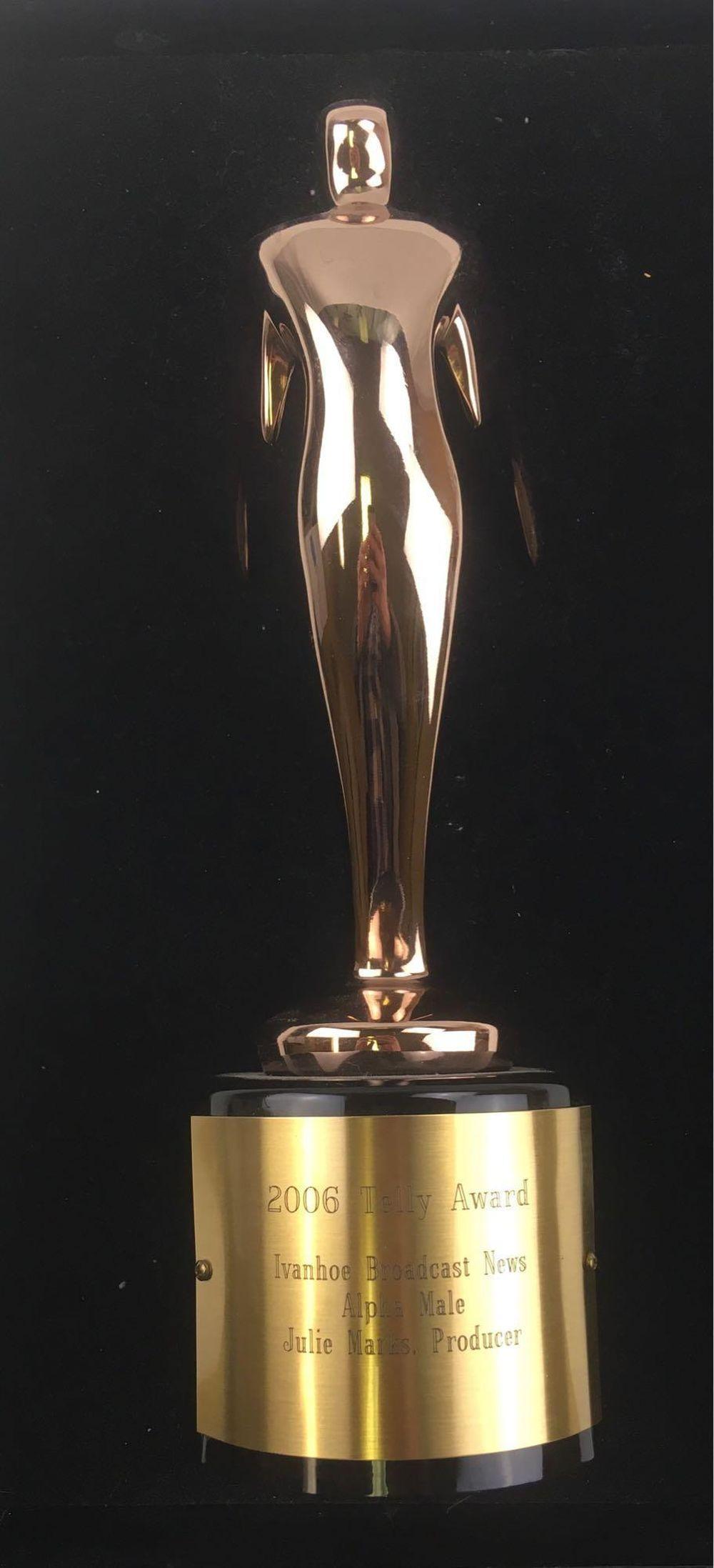 Lot 711: Telly Award, 2006