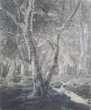 Lot 510: Adolphe Theodore Martial Potemont Etching of Forest