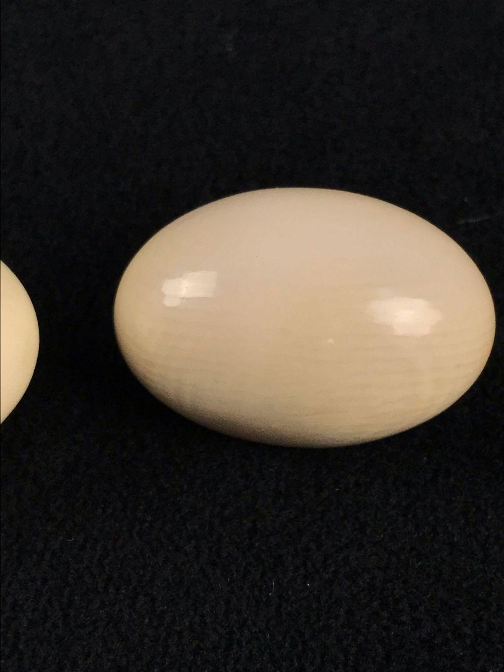 Lot 1015: Vintage Carved Bone Oval Earrings