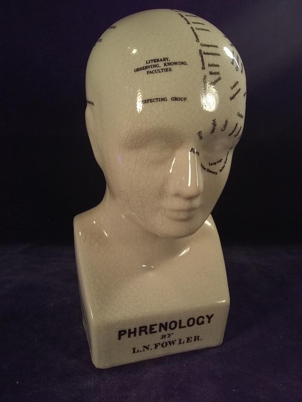 Porcelain Phrenology Head