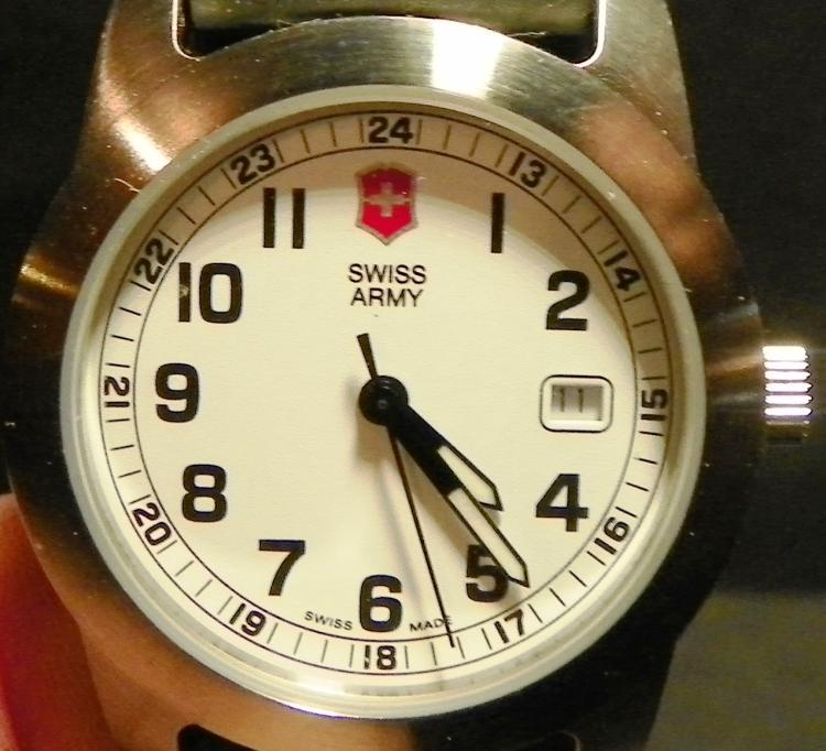 Swiss Arm Wrist Watch