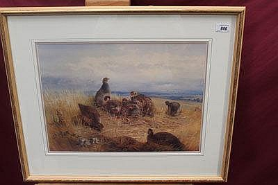 Archibald Thorburn, pair coloured prints of