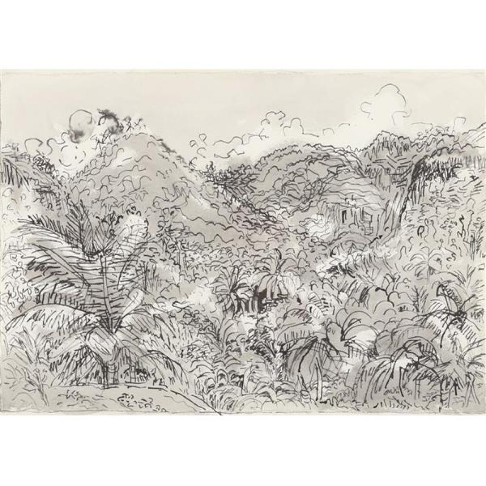 "Nell Blair Walden Blaine, (New York / Massachusetts, 1922-1996), St. Lucia, April 1965, ink wash on paper, 14""H x 20""W (sight), 19 1..."
