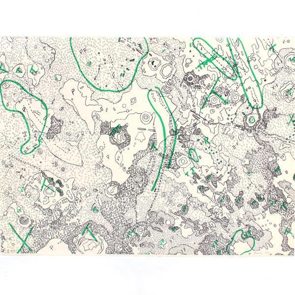 "Nancy Stevenson Graves, (New York / Massachusetts, 1940-1995), Lunar Map IV; ""Julius Ceasar Quadrangle of the Moon"", 1972, lithograp..."
