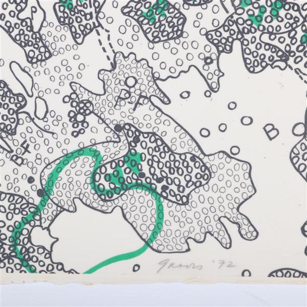 Nancy Stevenson Graves, (New York / Massachusetts, 1940-1995), Lunar Map IV;