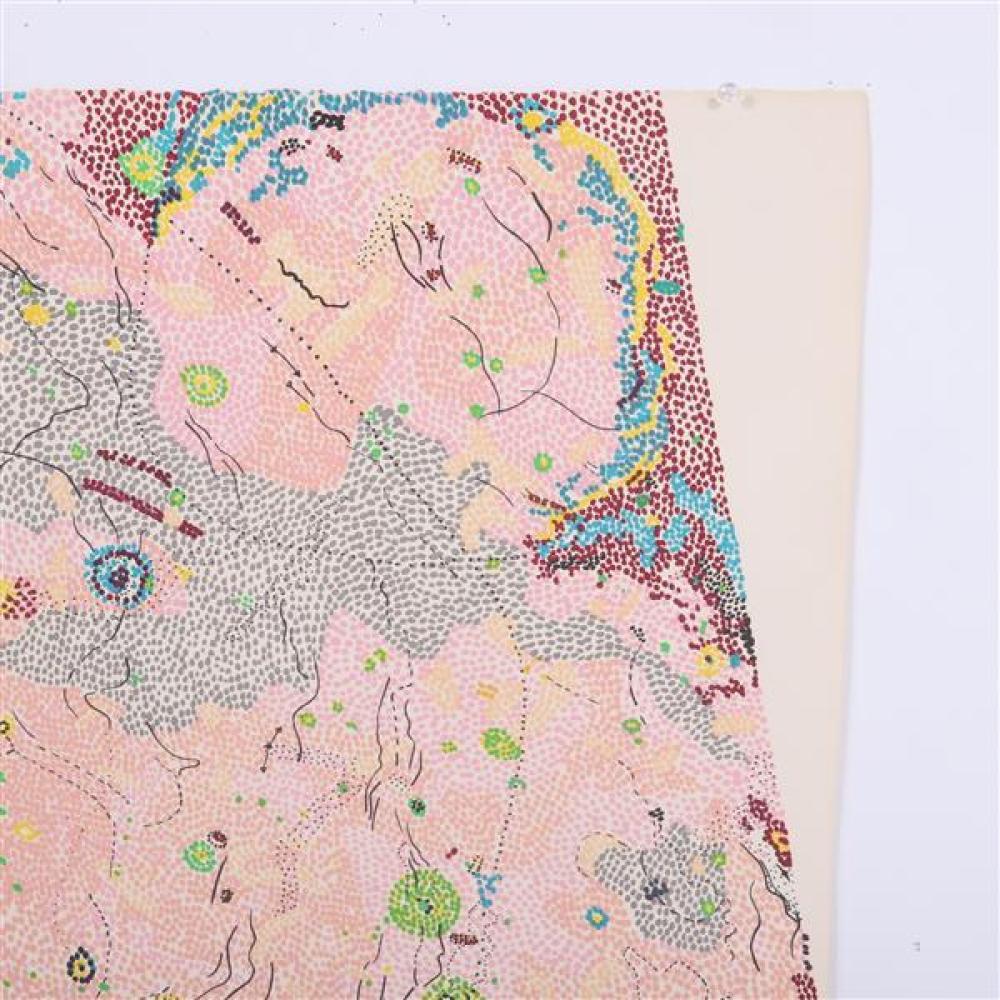 """Nancy Stevenson Graves, (New York / Massachusetts, 1940-1995), 1972, lithograph, 22 1/4""""H x 30""""W"""