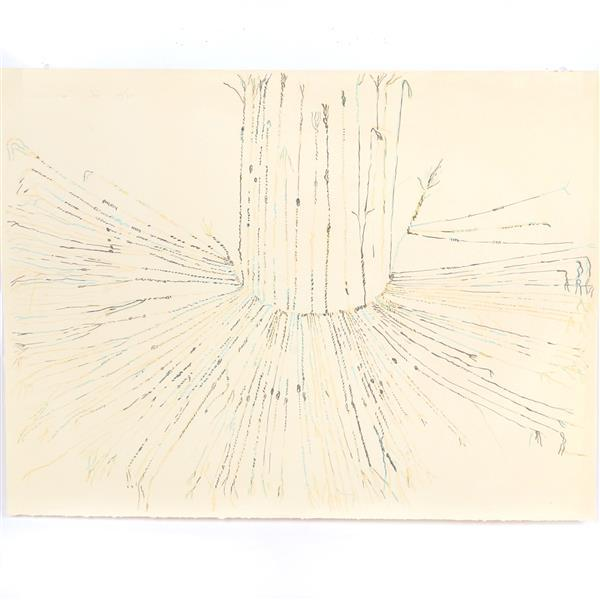 "Nancy Stevenson Graves, (New York / Massachusetts, 1940-1995), untitled, 1974, lithograph, 22 1/2""H x 30""W"