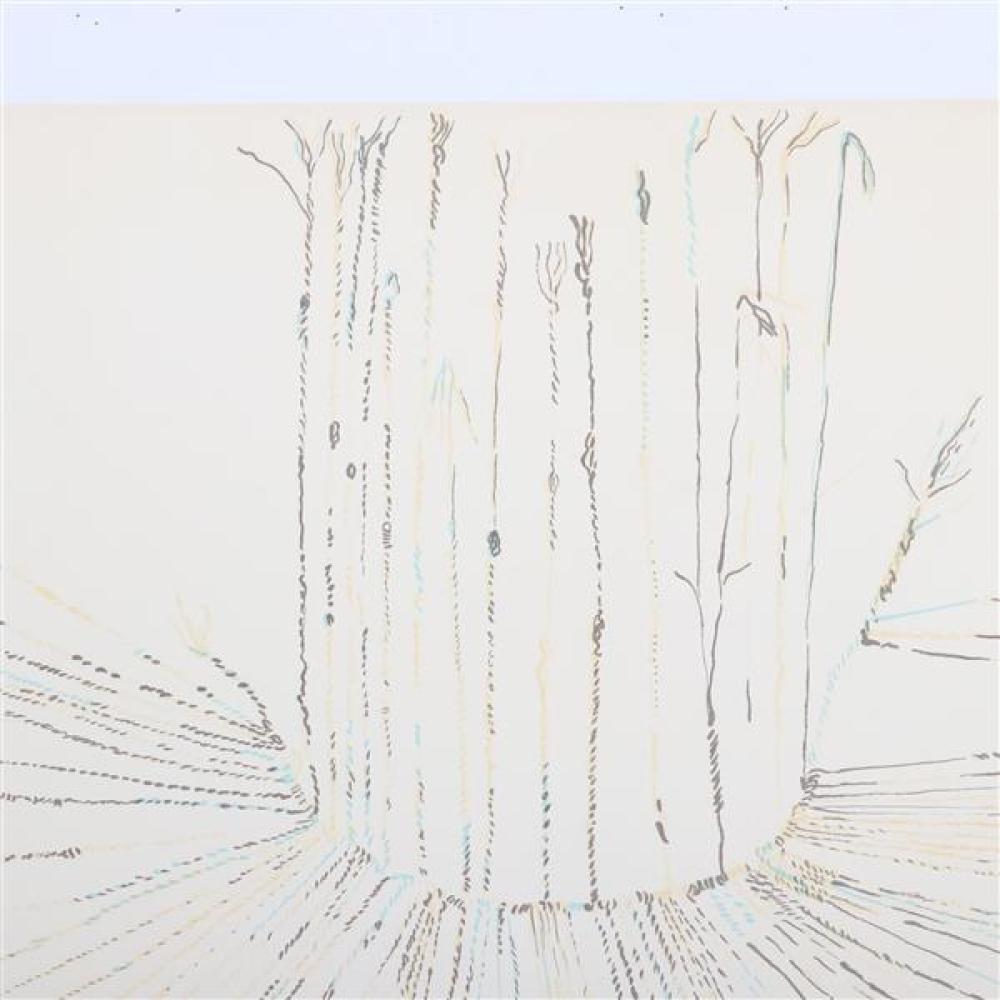 Nancy Stevenson Graves, (New York / Massachusetts, 1940-1995), untitled, 1974, lithograph, 22 1/2