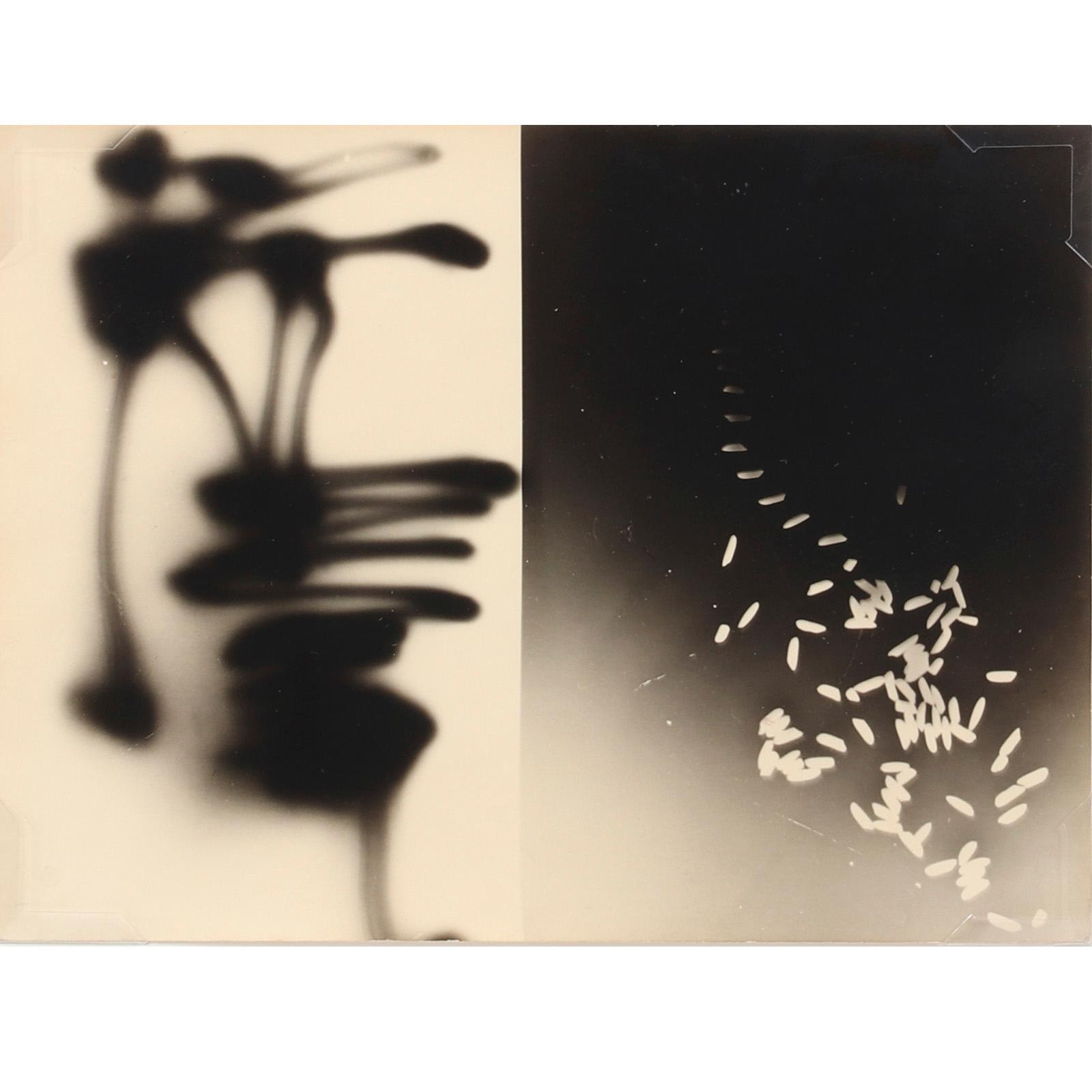 "Gyorgy Kepes, (American, 1906-2001), Kinetic Static Photogram, 1949, silver gelatin photogram, 7"" x 9 1/4"" (sight), 11 1/4"" x 13 1/2"" (frame)."