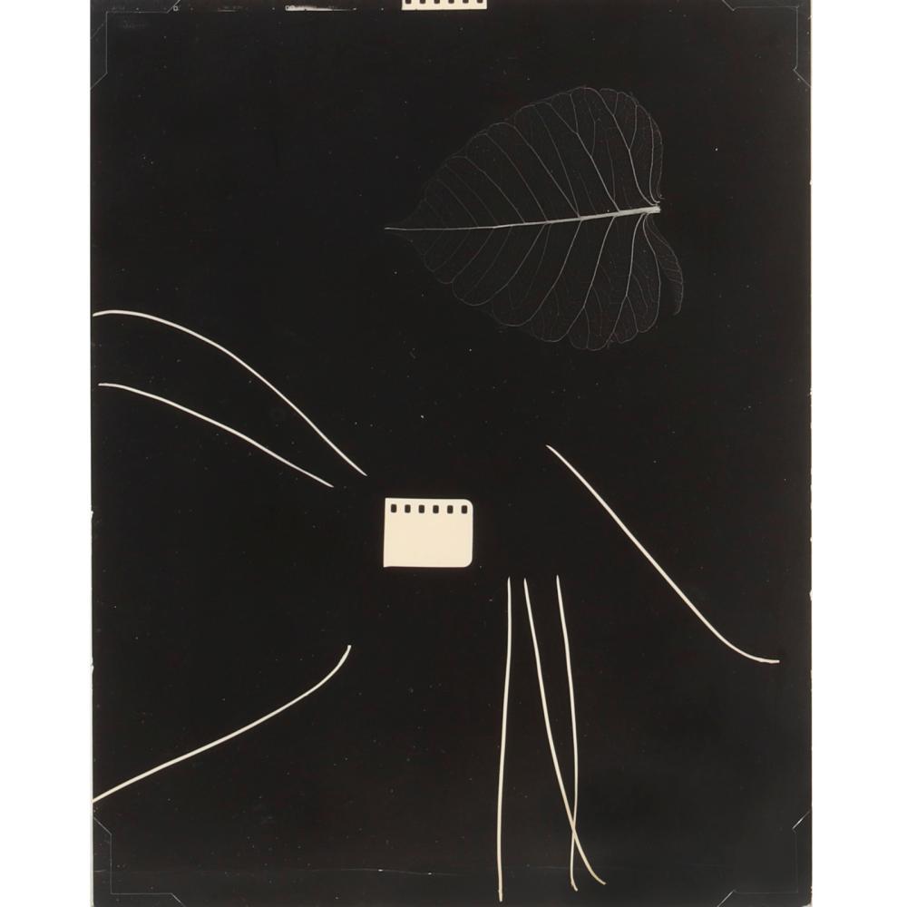 "Gyorgy Kepes, (American, 1906-2001), Bio Compo Photogram, 1956, silver gelatin photogram, 12""H x 9 1/2""W (image), 16 1/4""H x 14 3/4""W (frame)."