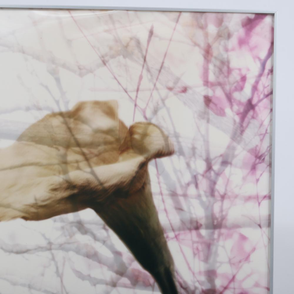 "Linda Girvin, (American, 20th/21st Century), Fall Requiem, 2001, lenticular lens photography, 35 1/4"" x 29 1/2""W, as framed."