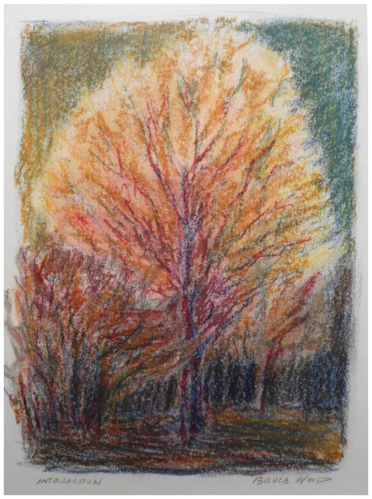 Contemporary Oil Pastel Drawing Tree Study