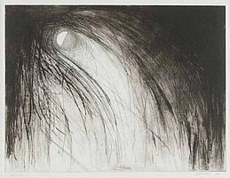 Doris Rohr - DESCENT - Artist's Black & White