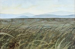 Patrick McLaughlin - GRASS & LANDSCAPE -