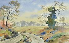 Patrick McLaughlin - A COUNTRY WALK - Watercolour Drawing - 9 x 14 inches - Signed