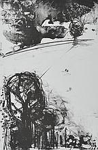 Doris Rohr - A WALK IN THE FIELDS - Black & White