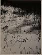 CLERGUE Lucien, né en 1934 Le Vaccarès, Camargue, 1963 tirage argentique en noir et blanc sur pa¬pier satiné, tirage de 1984, exemplaire 22 / 30 (petit pli dans un coin), signé et daté en bas à droite, signé, titré et daté au dos. 37,5 x 28 cm.