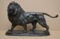 Édouard DELABRIERRE  Lion bronze à patine verte nuancée de noir et de brun (traces de frottements), sur la terrasse : E. DELABRIERRE,  Ht. : 30,5 - Lg. : 48 cm.