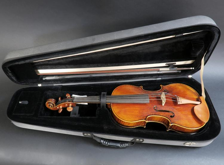 Viola 16 Inches By
