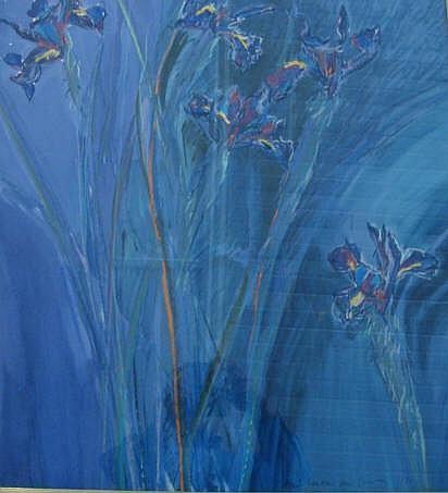 JANSEN VAN VUUREN, LOUIS (1949 - ) IRIS Mixed