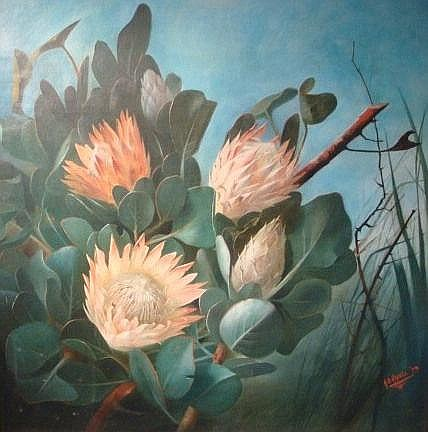 HAZELL, AMY BEATRICE (1864-1946) PROTEAS Oil on