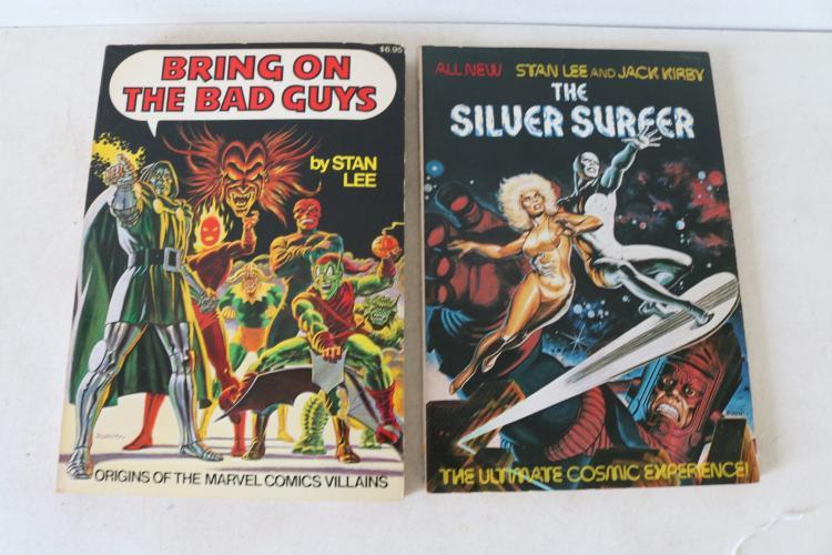 Lot of 2 Stan Lee Comic Books