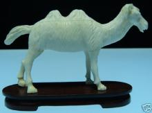 Solid Bone Camel