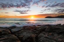 Manly Sunrise By Scott Barlow