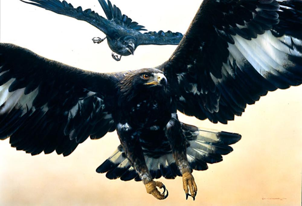 Carl Brenders…Without Warning-golden Eagle And Raven