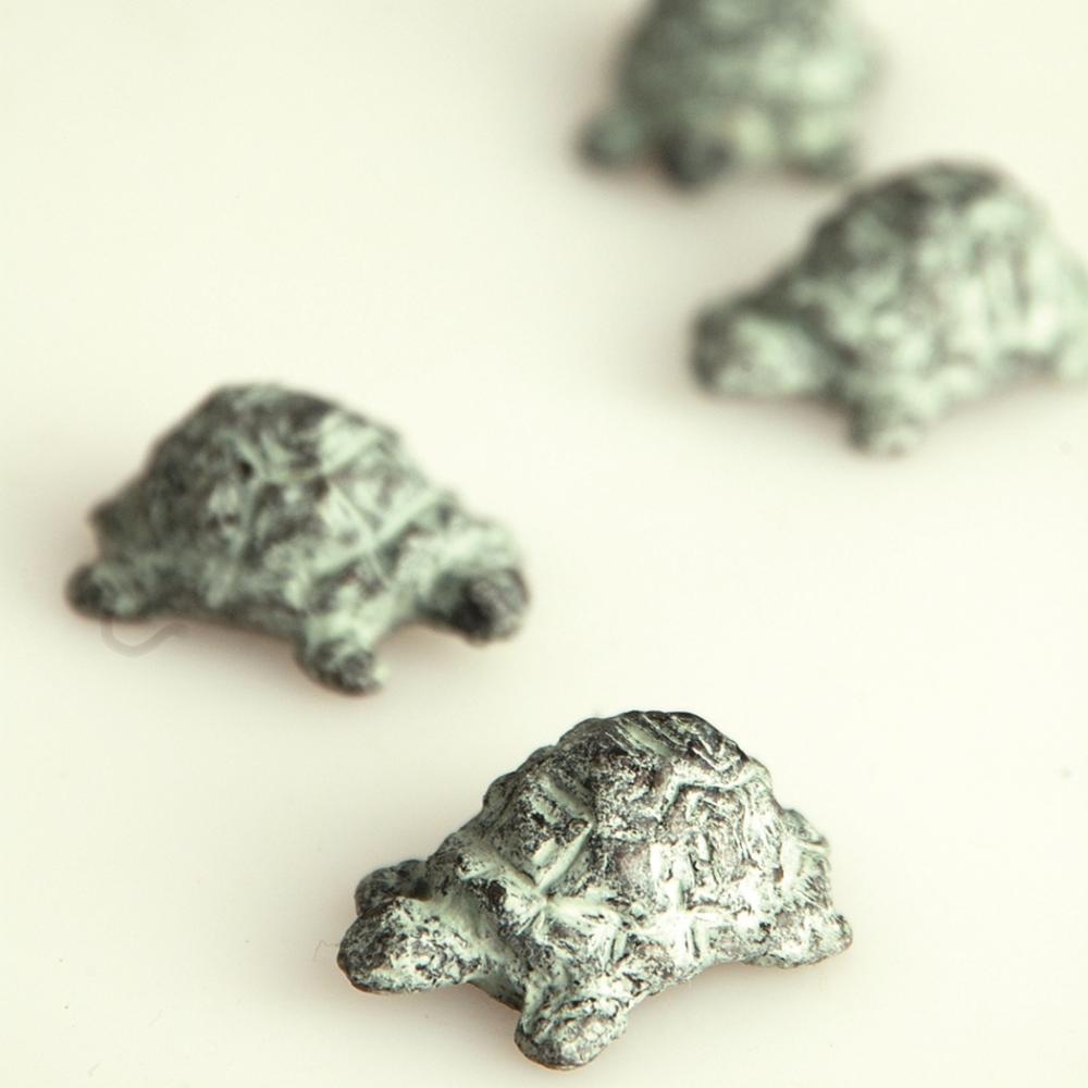 Curious Turtle Minimals