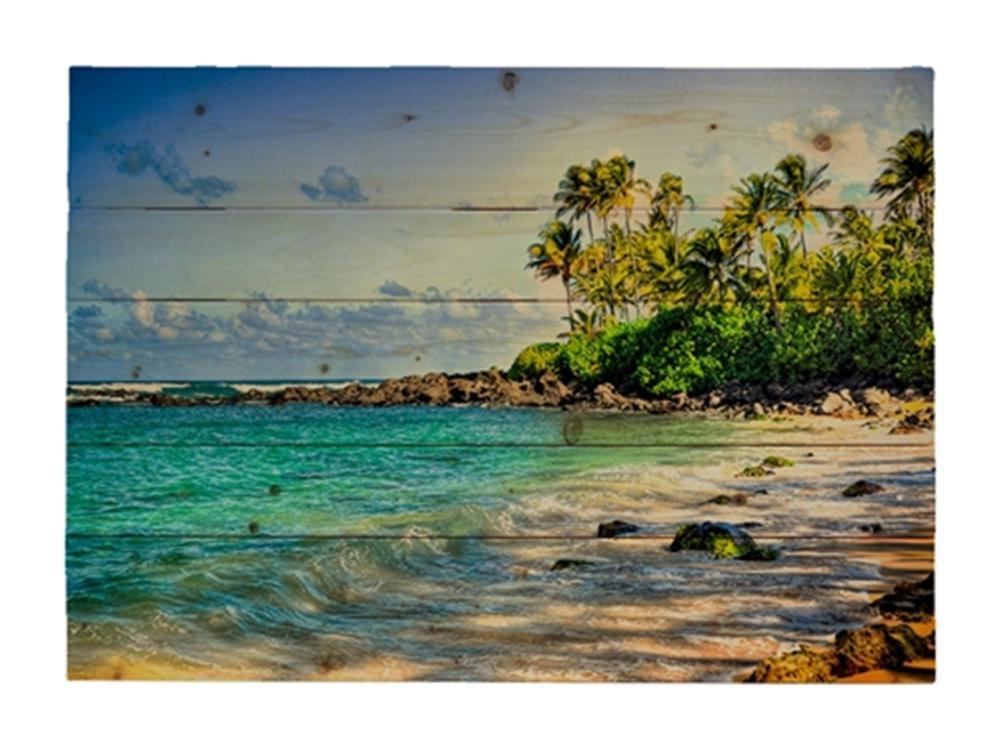 Kelly Wade - Turtle Beach
